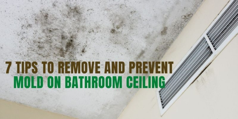 7 Tips To Remove and Prevent Mold On Bathroom Ceiling
