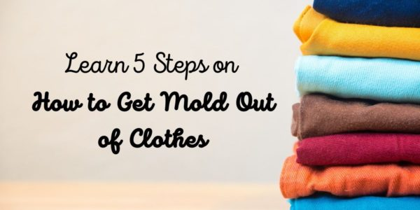 Learn 5 Steps on How to Get Mold Out of Clothes